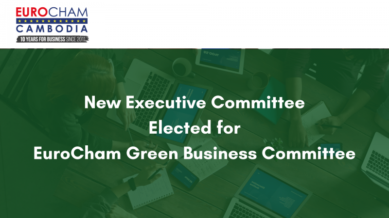 New Executive Committee  Elected for  EuroCham Green Business Committee